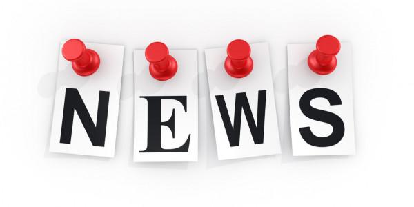 СМИ узнали, как суд разделил имущество Петросяна и Степаненко