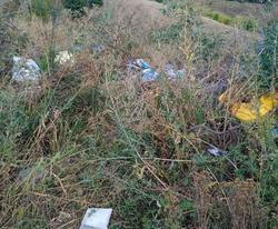 Двое оштрафованы за сброс строительного мусора на Кумысной поляне
