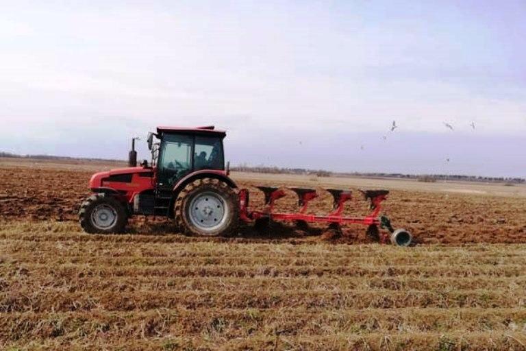 Семейные фермы и сельхозкооперативы в Тверской области получат десятки миллионов рублей