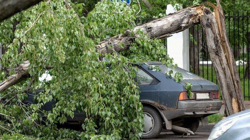 Конец света: очередной ураган обрушился на Саратовскую область