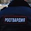 Омские росгвардейцы нашли потерявшуюся 4-летнюю девочку