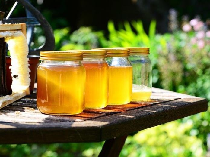 Диетолог Михаил Гинзбург рассказал, кому нельзя есть мёд