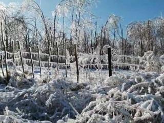 Без света, тепла и воды: в Приморье борются с последствиями ледяного дождя