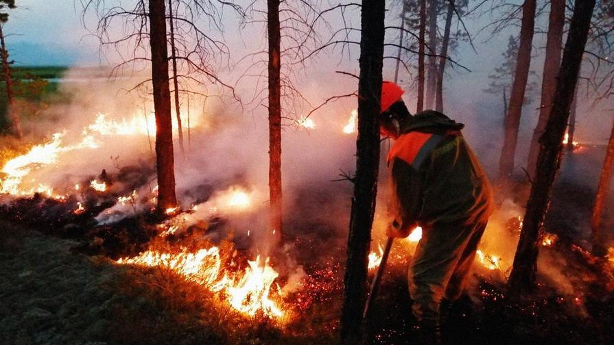 Еще в трех субъектах России ввели особый противопожарный режим