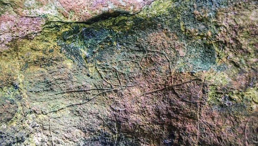 В итальянской пещере найден необычный рисунок птичьей головы времен палеолита