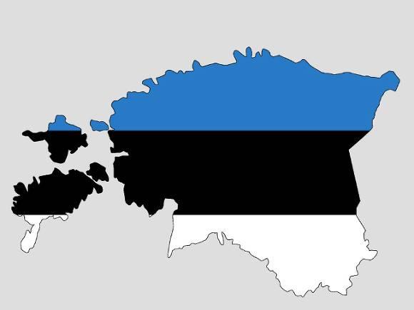 Эстония отметит день независимости без парада, но с факельным шествием