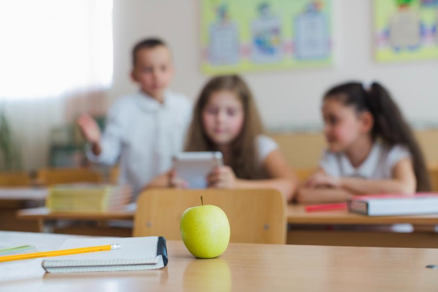 FESCO и благотворительный фонд «Шалаш» запускают в Приморье программу по работе с трудным поведением среди школьников